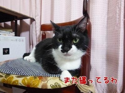 P1690322編集②.jpg