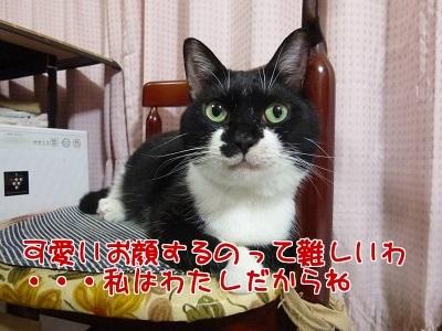 P1690338編集②.jpg