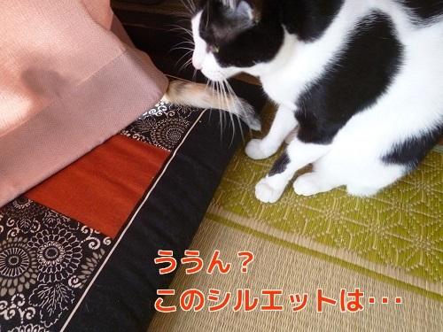 P1700345編集②.jpg