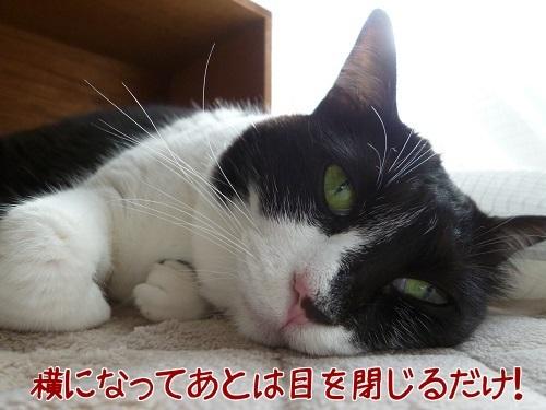 P1710210編集②-1.jpg