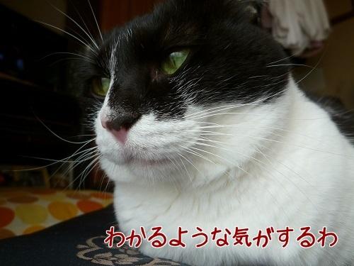 P1710212編集②.jpg