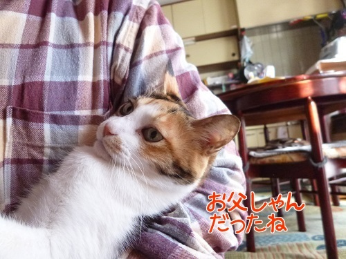 P1730039編集②.jpg