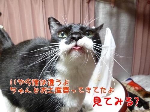 P1750484編集②.jpg