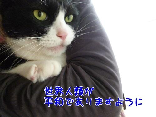 P1750544編集②.jpg