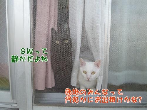 P1770420編集②.jpg
