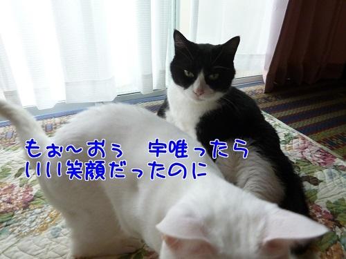 P1790020編集②.jpg