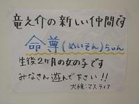 P1830764編集.jpg