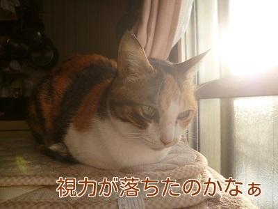 P1860946編集②.jpg