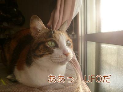 P1860948編集②.jpg