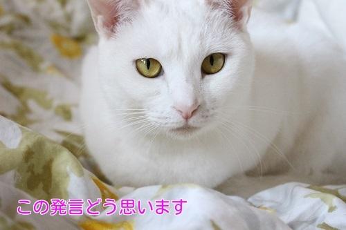 IMG_0166編集②.jpg