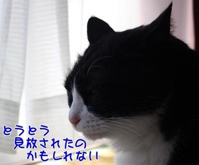 IMG_0460編集②.jpg