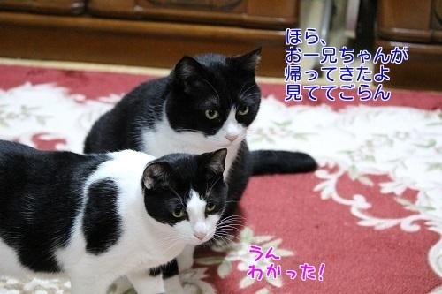 IMG_0879編集②.jpg