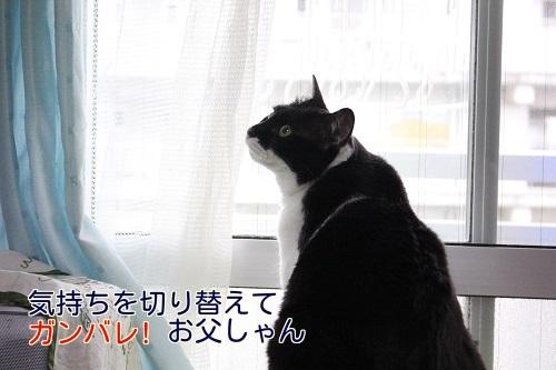 IMG_1805編集②.jpg