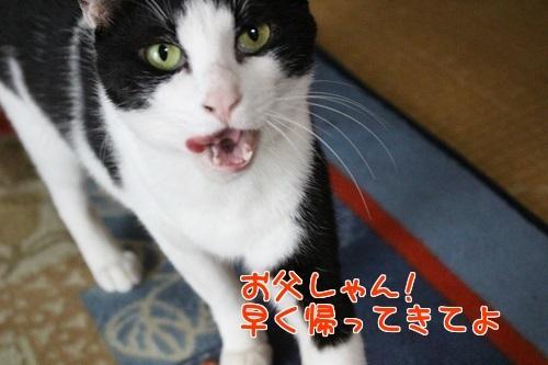 IMG_2825編集②.jpg