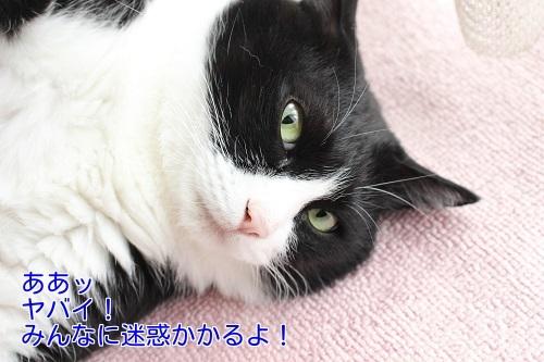 IMG_3864編集②.jpg
