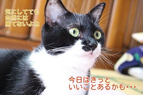 IMG_4461編集②.jpg