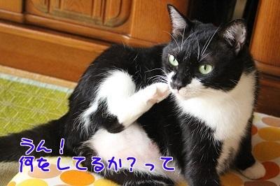 IMG_5247編集②.jpg