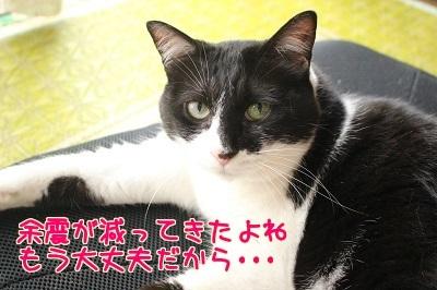 IMG_5263編集②.jpg