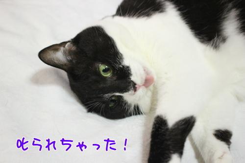 IMG_6041編集②.jpg