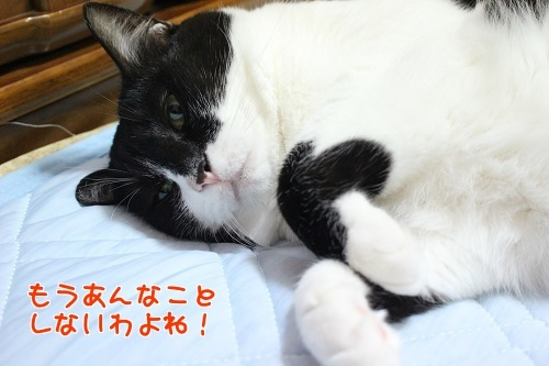 IMG_6072編集②.jpg