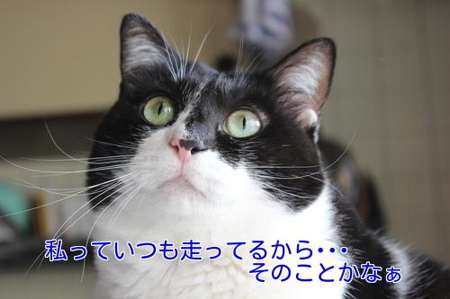 IMG_9753編集②.jpg