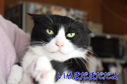 IMG_9832編集②.jpg