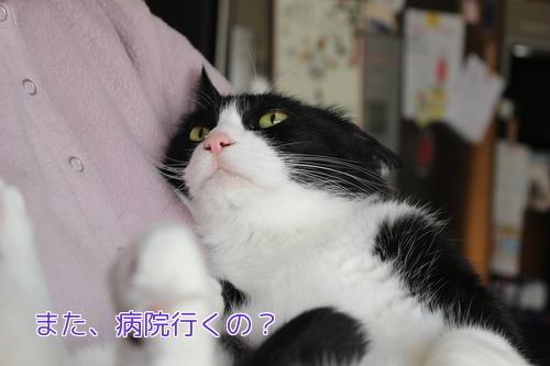 IMG_9836編集②.jpg