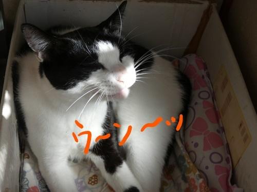 P1020655編集②.jpg