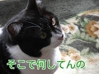 P1030414編集②.jpg
