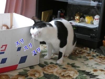 P1030831編集②.jpg