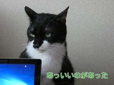 P1050395編集②.jpg