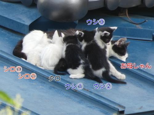 P1050659編集②.jpg