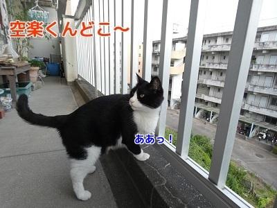 P1060132編集②.jpg