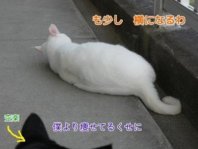 P1060144編集②.jpg