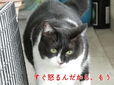 P1070275編集②.jpg