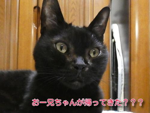 P1080632編集②.jpg