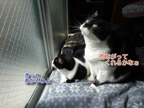 P1090732編集②.jpg
