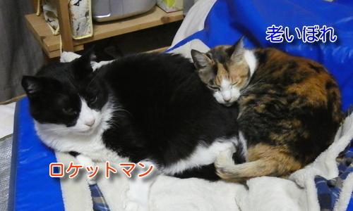 P1090773編集②.jpg