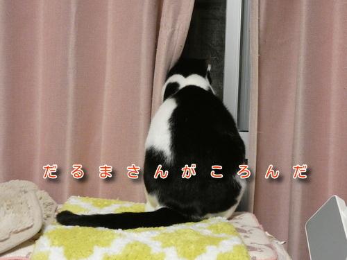 P1100117編集②.jpg