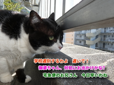 P1100330編集②.jpg