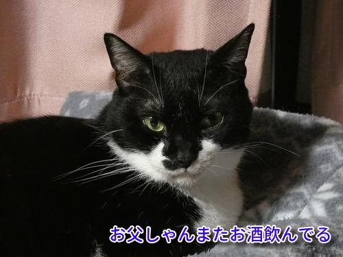 P1100918編集②.jpg