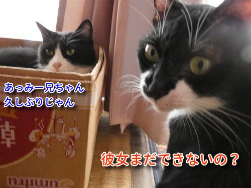P1110306編集②.jpg