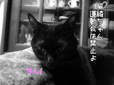 P1180861編集③.jpg