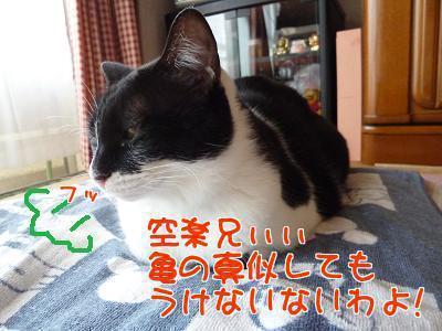P1190534編集②.jpg