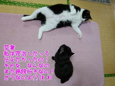 P1200268編集②.jpg