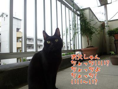 P1220017編集②.jpg
