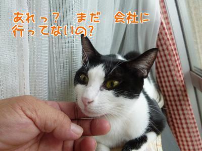 P1220366編集②.jpg
