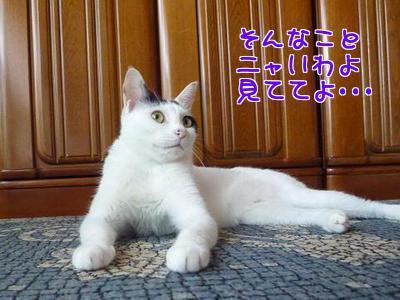 P1220465編集③.jpg