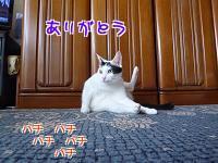 P1220472編集②.jpg