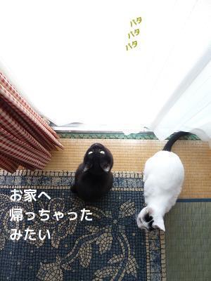 P1270089編集②.jpg
